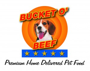 Bucket O Beef logo + tagline