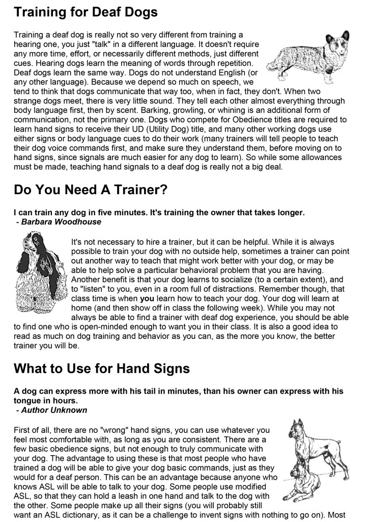 Training-for-Deaf-Dogs-1