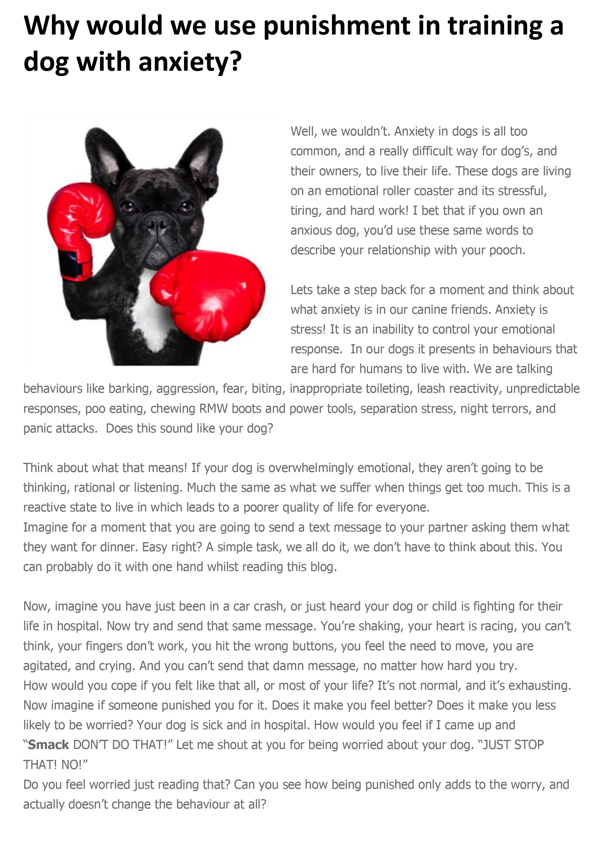 Training a dog with anxiety - MOVING PAWS INCORPORATED