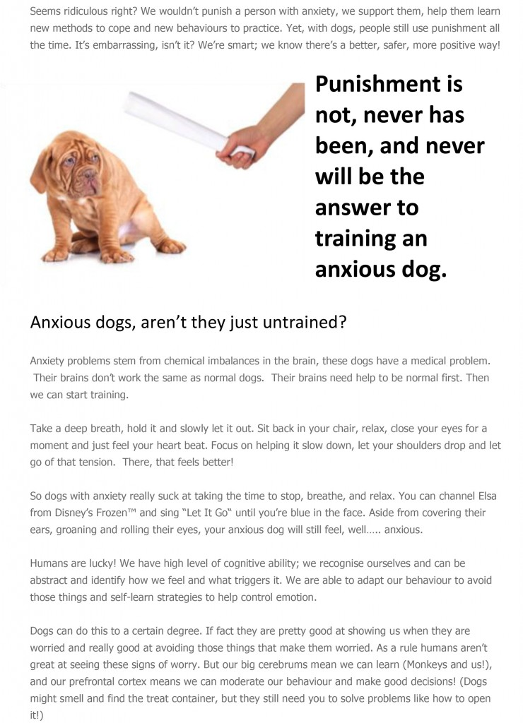 Why-would-we-use-punishment-in-training-a-dog-with-anxiety-2